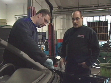 Automotive Glass Installers And Repairers
